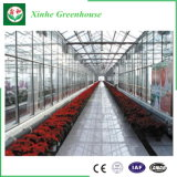 Qualitäts-multi Überspannungs-landwirtschaftliches Glasgewächshaus für das Wachsen
