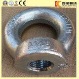 China-Lieferanten-Qualitäts-Edelstahl LÄRM 582 M36, die ovale Augen-Mutter anheben