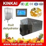 Frutta secca commerciale che disidrata macchina