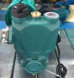 De elektrische AutoCirculatiepomp van het Hete en Koude Water Wdm128-Wdm1500