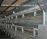 H t-구조 유형 자동적인 전기 요법 보일러 닭 건전지 감금소 최신 판매