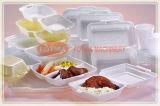 Chaîne de production de conteneur de nourriture de picoseconde