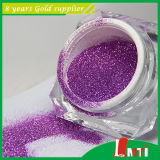 Tapa 10 Pet Glitter Powder para Art Nail