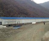 Camera di pollo del pollame della struttura chiara prefabbricata/azienda agricola d'acciaio