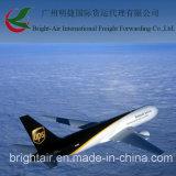 Preiswertes Courier Express From China nach Südafrika