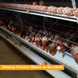 H tapent la volaille galvanisée soulevant le matériel pour le poulet