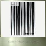 Plaque noire colorée par fournisseur d'acier inoxydable de couleur de délié de la Chine Brown