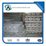 Treillis métallique hexagonal enduit de poulet de compensation de fil de PVC de Bwg24 *1/2 ''