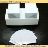 Cartão do presente/cartão magnético/cartão do código de barras em China
