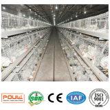 Автоматическая цыплятина наслаивает клетку