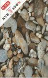 텔레비젼 벽 훈장을%s 대리석 색깔 3.6mm 간격 PVC 장