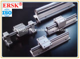 CNC MachineのためのMgn Linear Guide Rail