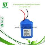 2600mAh Li-ion 12V 18650 packs batterie pour des lumières de Fishling