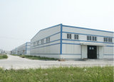 Edifício da construção de aço do armazém da oficina da manufatura do projeto com Ce (SSF-001)