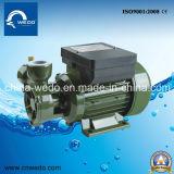 Wedo dB 550A 홈과 농업 (0.75HP)를 위한 전기 깨끗한 물 펌프