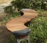 Cadeira nova de Gardren do estilo no jardim