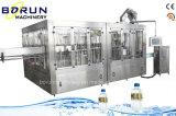 Chaîne de production de mise en bouteilles d'eau minérale de bouteille d'animal familier