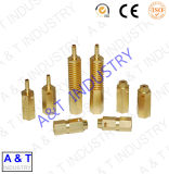 中国製高品質の男性か女性の真鍮のナット