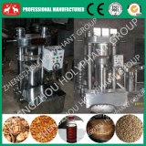 120kg/H de hydraulische Machine van de Pers van de Olie van de Sesam Koude (6YZ-320)