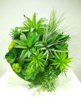 Migliore Succulent artificiale di vendita delle piante di Gu-SD-15129