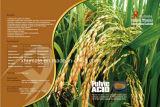 80% BioTechnologie Fulvic Säure