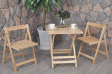 Im FreienFolded Table und Chair Wooden Garten Set (M-X1028)