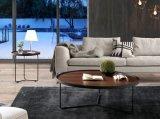 Tavolini da salotto di legno rotondi popolari semplici di ronzio