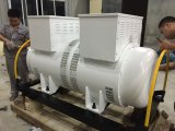 50kw 50-60Hz AC de driefasen Roterende Synchrone Motor van de Omschakelaar van de Frequentie