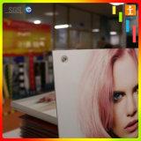 Stampa della scheda della gomma piuma del PVC/fornitore caldo di formato 1.22m*2.44m/Biggest a Schang-Hai