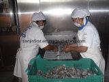 Double congélateur spiralé/surgélateur d'Industrail pour des poissons de fruits de mer