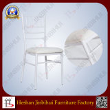 Famlity Party Chair Restaurant Dining Chairs с Cushion (BH-L8815C)