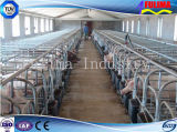 Ganadería Equipo de la estructura de acero de cerdo / vaca Casa (FLM-F-019)
