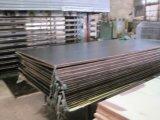 Il compensato/Brown Shuttering/pellicola nera hanno affrontato il compensato/compensato del pioppo/la cassaforma/costruzione concrete Constructionmaterial/compensato impermeabile