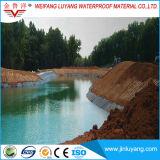 Membraan van de Levering EPDM van China het Rubber Waterdichte voor de Voering van de Vijver van Vissen