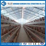 Il pollo della tettoia dell'azienda avicola della struttura d'acciaio mette a strati la Camera