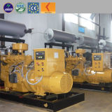 10kw - 5MW Electricity Power Generation Biomass Gasification Power Plant