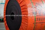 Bandas transportadoras resistentes químicas