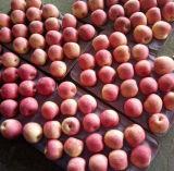 Новая коробка урожая пакуя китайский красный Apple