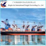 Agente de envio do frete de mar do navio da gota de China ao Ec de Libertad do La, Equador