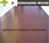 De tamaño natural Shuttering la madera contrachapada concreta con 1220X2440m m 1250X2500m m