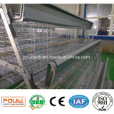 Cages de ferme de poulet de batterie de grande capacité de matériel de volaille