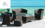 Мебель гостиницы мебели мебели сада напольная