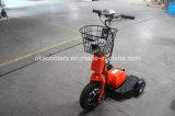 500W 리튬 건전지 전기 세발자전거 3 바퀴 전기 화물 Trike