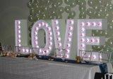 Sinal feito sob encomenda da letra do bulbo do casamento