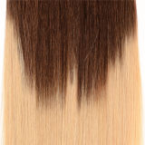 Hair Extension 100g/SetのHuman Hair Extensions 10PCS/Set Ombre Color ClipのバージンブラジルのStraight Hair Clip