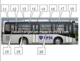 Seitenscheibe und Sicherheit Windows für Bus