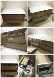 Module en bois moderne de vanité de salle de bains de forces de défense principale de N&L