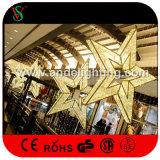 Indicatori luminosi decorativi della stella 3D di festival del centro commerciale di natale