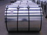 Les tôles d'acier galvanisées plongées chaudes en bobine/zinc de Gi des bobines 0.16-2.0mm*914-1250mm ont enduit la bobine en acier/bobine en acier galvanisée