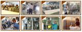 自動食糧機械は完了するPLC制御(CQT1000)を用いる通気されたNougatの生産ラインを